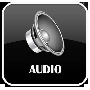 Audio Repair Services